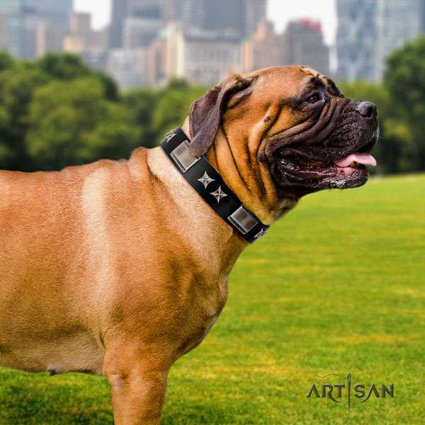 Bullmastiff full grain leather dog collar with decorations for your handsome canine