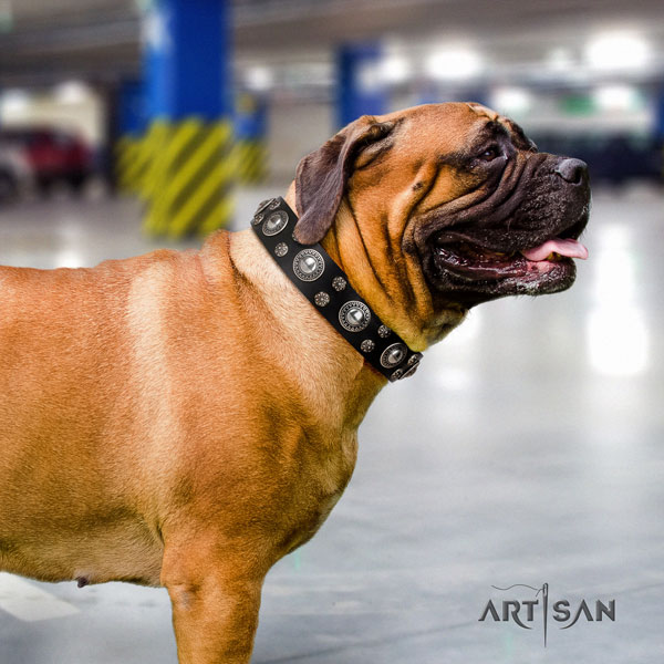 Bullmastiff decorated leather dog collar for your impressive four-legged friend