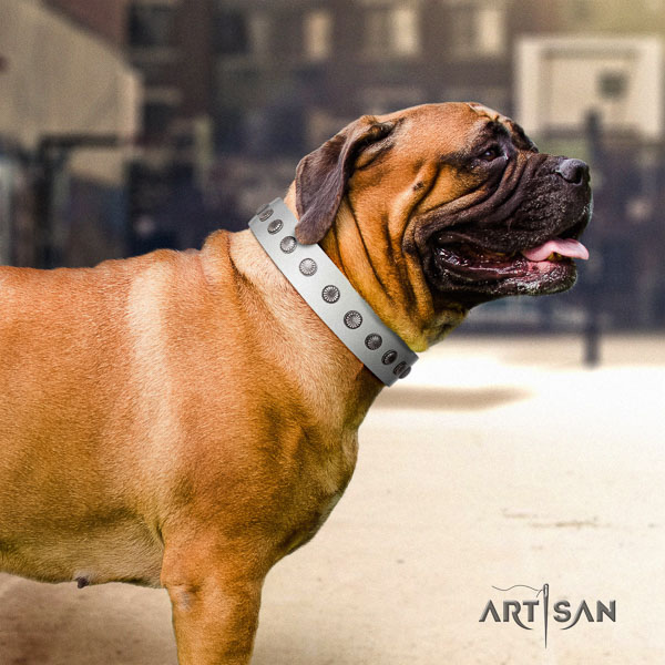 Bullmastiff unusual genuine leather collar with adornments for your canine