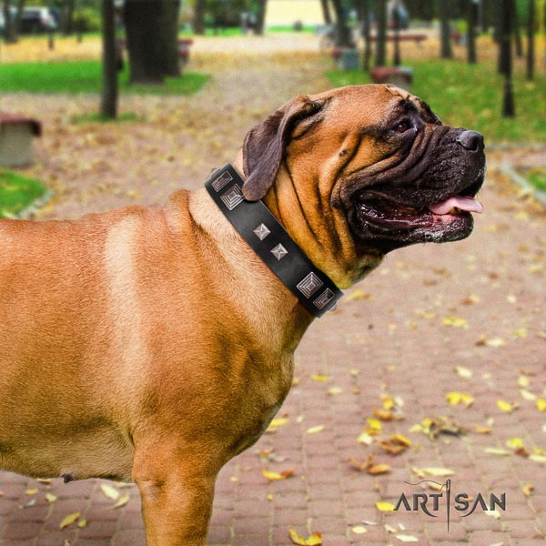 Bullmastiff remarkable natural genuine leather collar with decorations for your four-legged friend