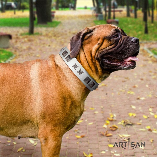 Bullmastiff adjustable full grain natural leather collar with studs for your pet