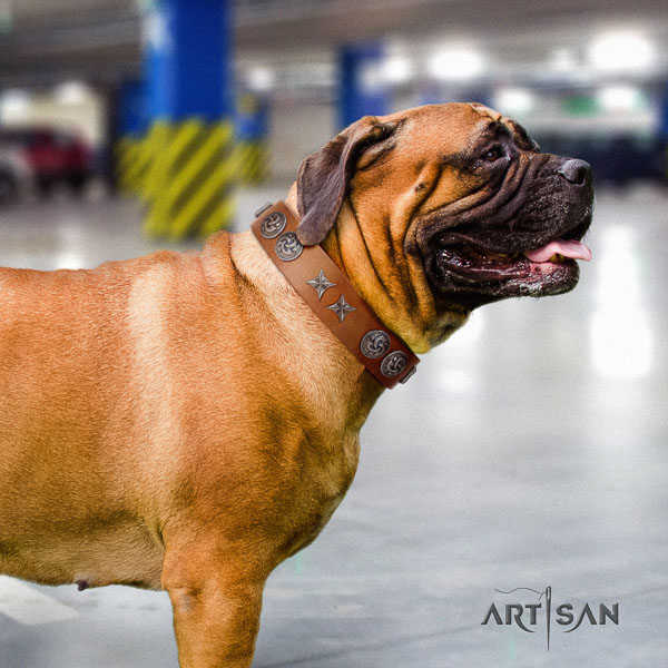 Bullmastiff fine quality full grain natural leather collar with adornments for your four-legged friend