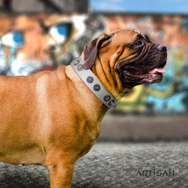 Bullmastiff amazing leather collar with embellishments for your canine
