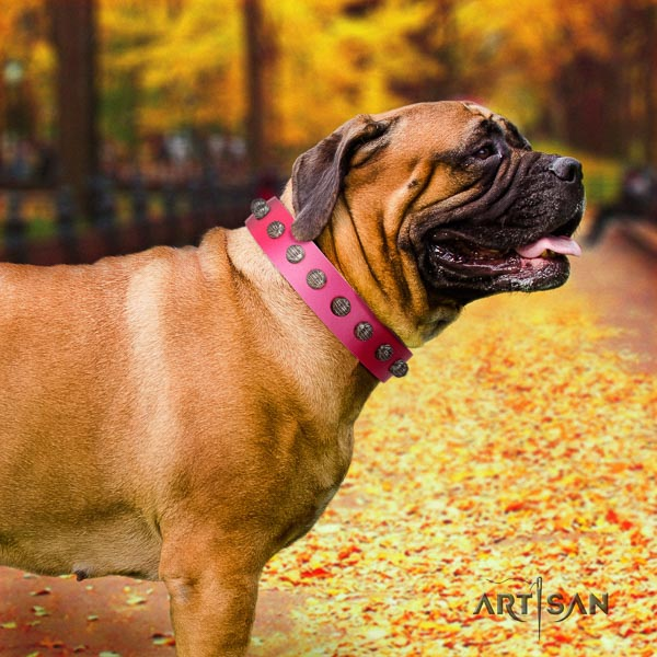 Bullmastiff top quality full grain genuine leather collar with decorations for your canine