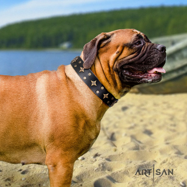 Bullmastiff adorned natural genuine leather dog collar for your lovely pet