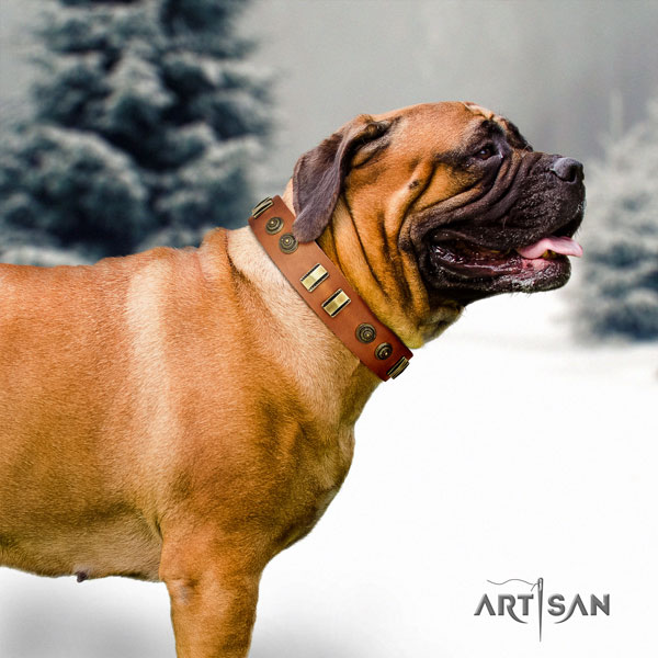 Bullmastiff full grain leather dog collar with decorations for your beautiful canine