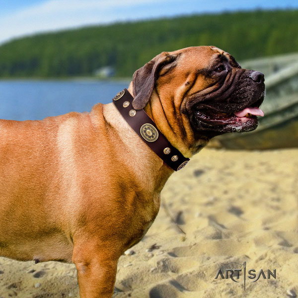 Bullmastiff decorated natural genuine leather dog collar for your beautiful canine