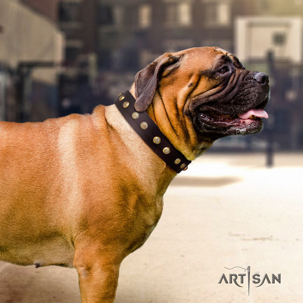 Bullmastiff embellished full grain leather dog collar for your impressive dog
