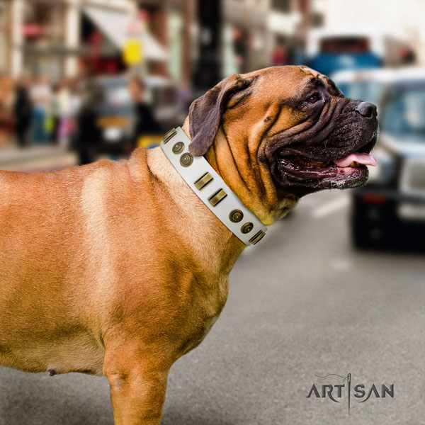 Bullmastiff natural genuine leather dog collar with adornments for your handsome doggie