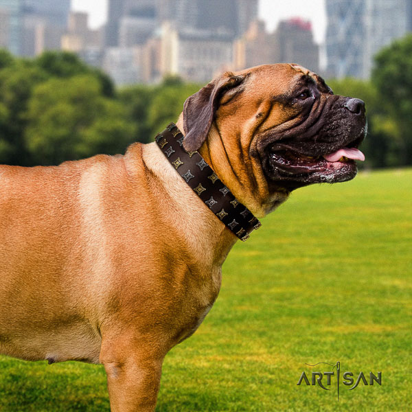 Bullmastiff everyday walking full grain leather collar with studs for your canine