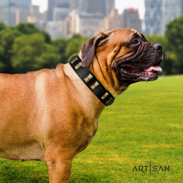 Bullmastiff walking natural leather collar with decorations for your doggie