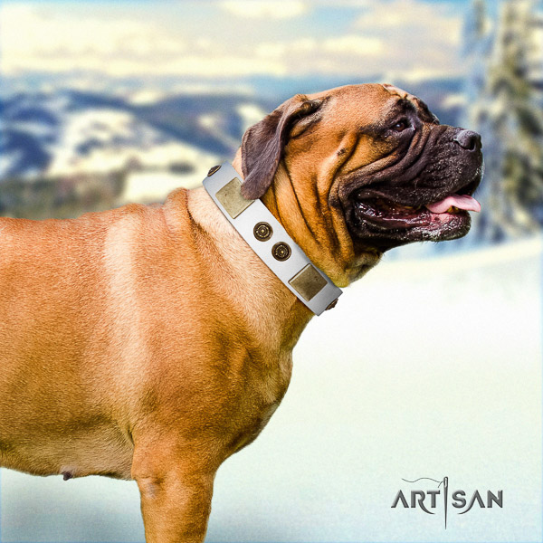 Bullmastiff comfortable wearing natural leather collar with decorations for your doggie