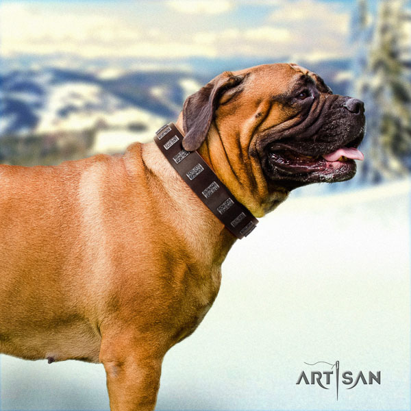 Bullmastiff stunning full grain leather collar with embellishments for your doggie