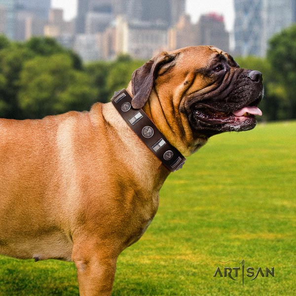 Bullmastiff impressive natural genuine leather collar with embellishments for your doggie