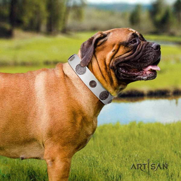 Bullmastiff easy to adjust full grain natural leather collar with adornments for your pet