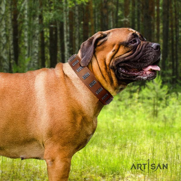 Bullmastiff adjustable natural genuine leather collar with adornments for your doggie