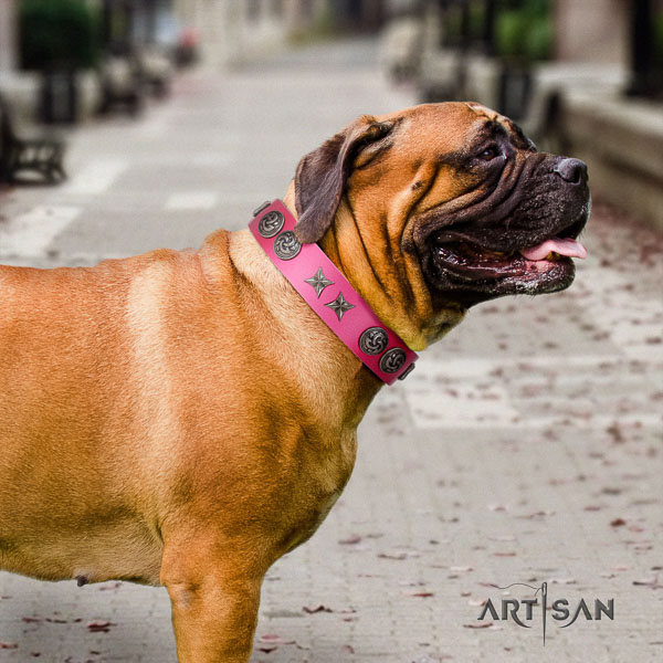 Bullmastiff stylish full grain leather collar with embellishments for your dog