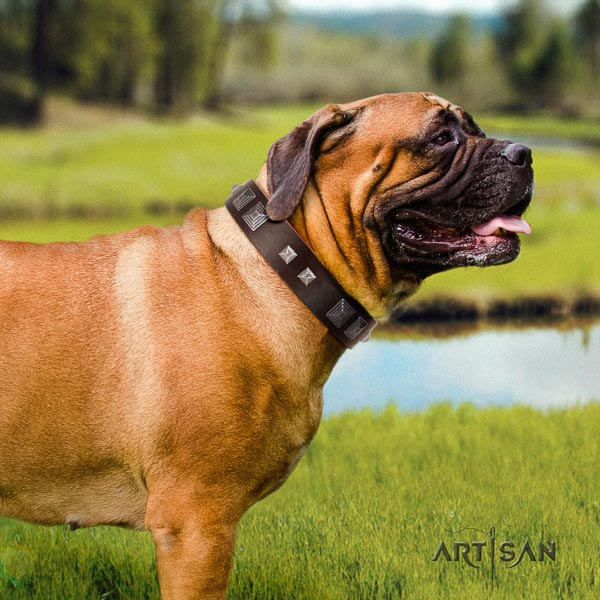 Bullmastiff stylish full grain natural leather collar with decorations for your canine