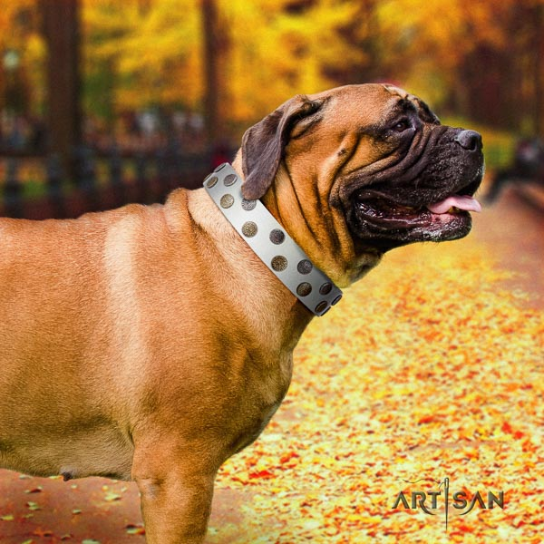 Bullmastiff trendy leather collar with embellishments for your four-legged friend