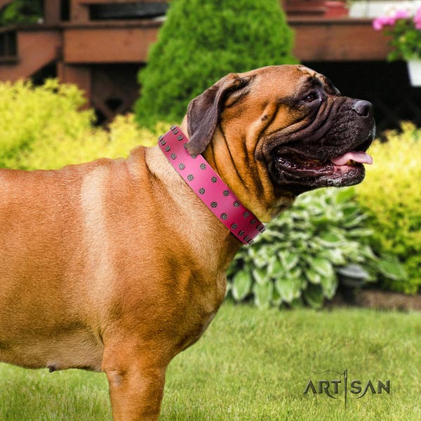 Bullmastiff significant full grain genuine leather collar with decorations for your pet