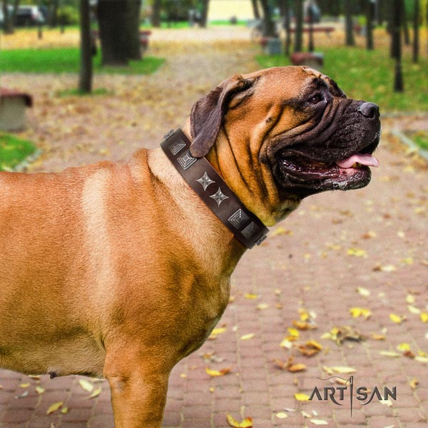 Bullmastiff exceptional full grain genuine leather collar with adornments for your pet