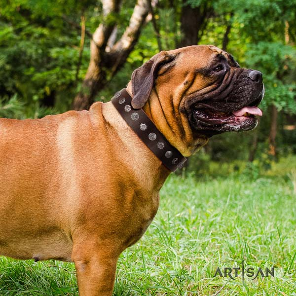 Bullmastiff easy wearing full grain leather collar with decorations for your pet