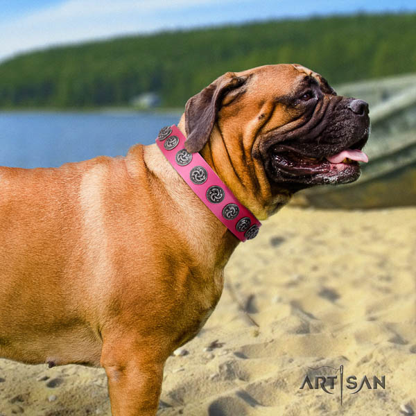 Bullmastiff convenient full grain leather collar with embellishments for your doggie
