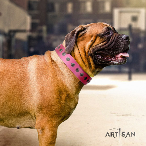 Bullmastiff awesome genuine leather collar with decorations for your dog