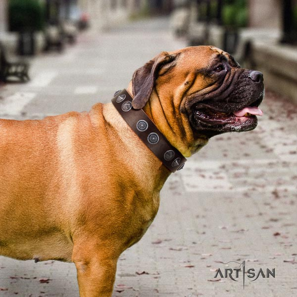 Bullmastiff adjustable full grain leather collar with adornments for your dog