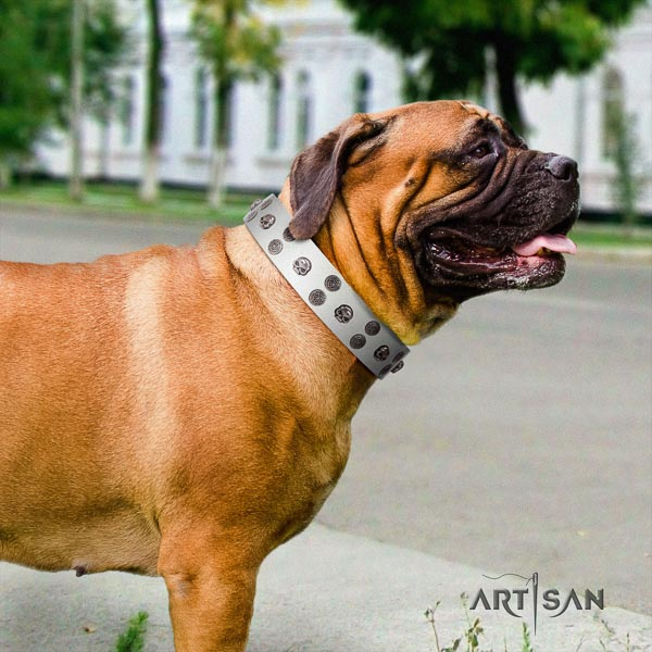 Bullmastiff stylish genuine leather collar with decorations for your doggie