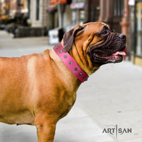 Bullmastiff comfortable full grain leather collar with decorations for your four-legged friend