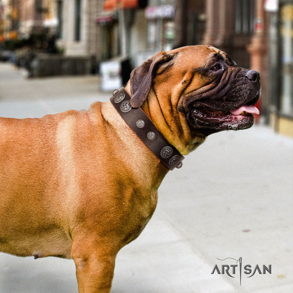 Bullmastiff impressive leather collar with adornments for your canine