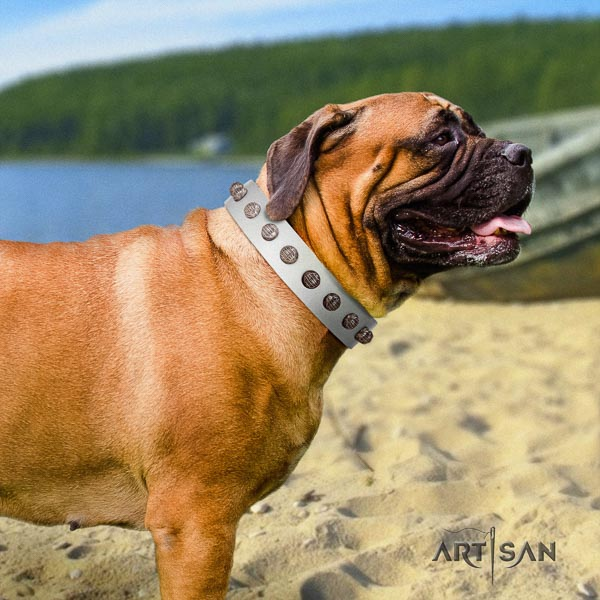 Bullmastiff top notch leather collar with decorations for your doggie