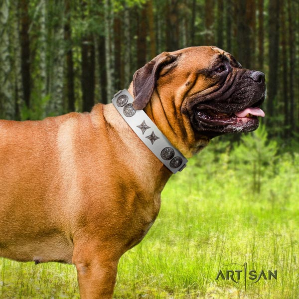 Bullmastiff unusual genuine leather collar with embellishments for your four-legged friend