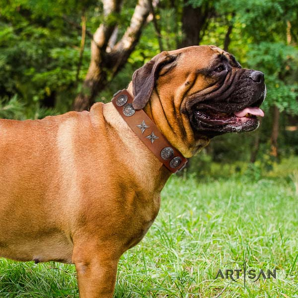 Bullmastiff easy to adjust natural genuine leather collar with adornments for your pet