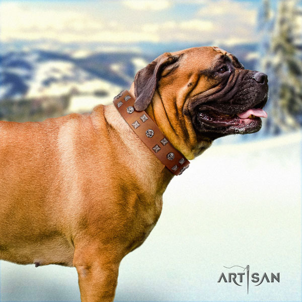 Bullmastiff handcrafted full grain natural leather collar with adornments for your four-legged friend