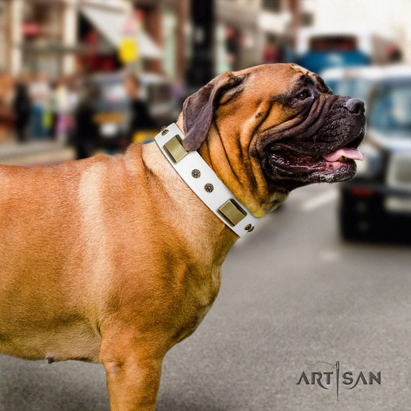 Bullmastiff studded genuine leather dog collar for your attractive pet