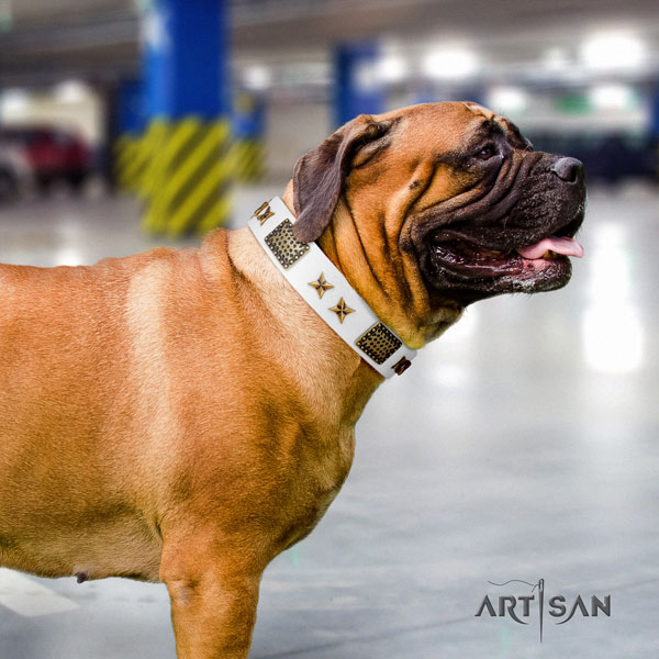 Bullmastiff decorated genuine leather dog collar for your impressive canine