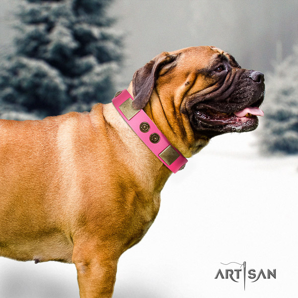 Bullmastiff comfy wearing full grain natural leather collar with embellishments for your canine