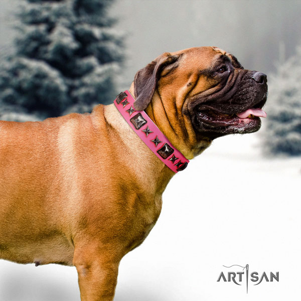 Bullmastiff embellished full grain natural leather dog collar for your beautiful four-legged friend