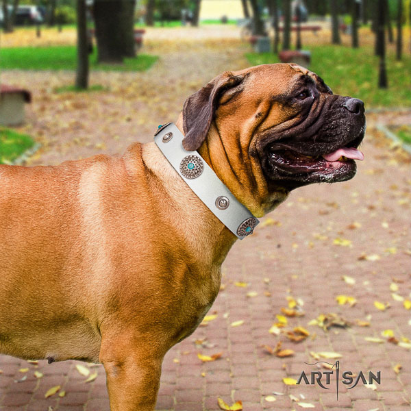 Bullmastiff fashionable leather dog collar with decorations for handy use