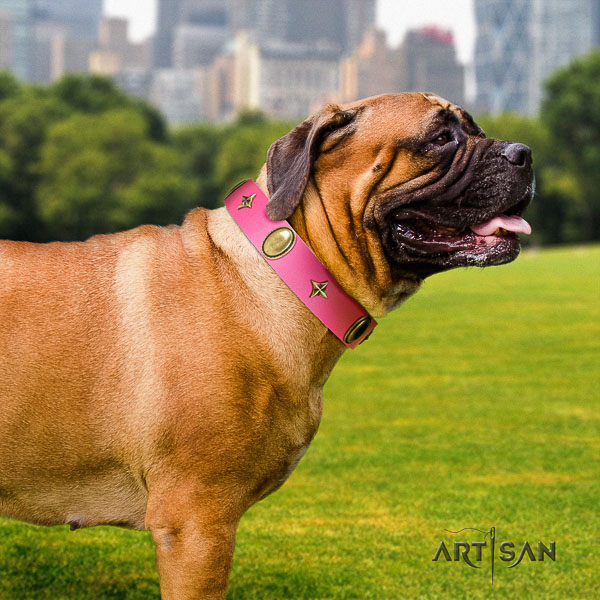 Bullmastiff handy use genuine leather collar with decorations for your four-legged friend