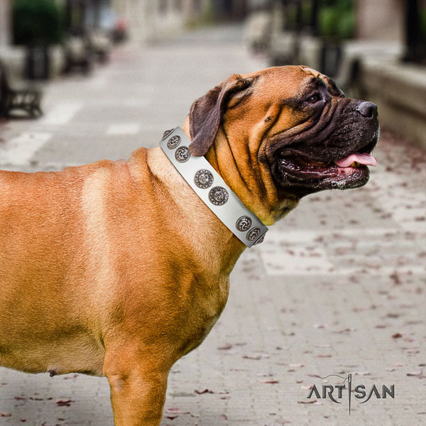 Bullmastiff unique genuine leather dog collar with embellishments for stylish walking