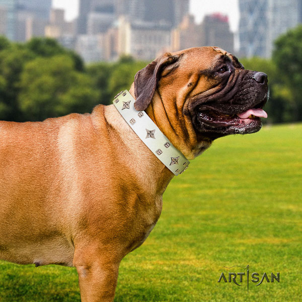 Bullmastiff incredible full grain leather dog collar with decorations for daily use