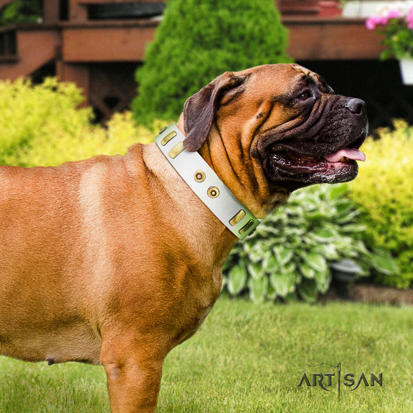 Bullmastiff comfy wearing genuine leather collar with decorations for your canine