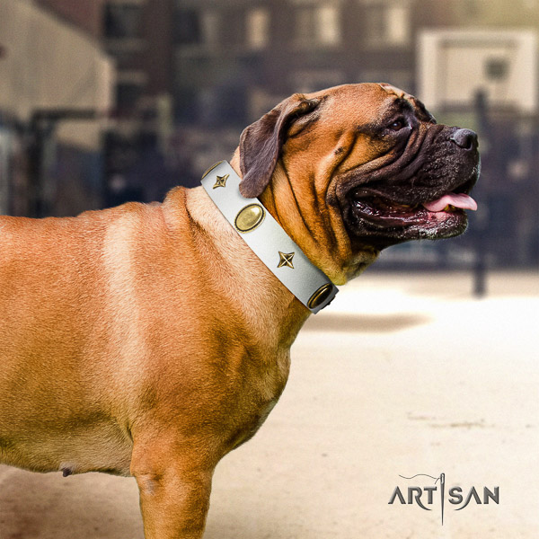Bullmastiff walking full grain genuine leather collar with embellishments for your canine