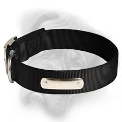 Bullmastiff dog collar with id plate
