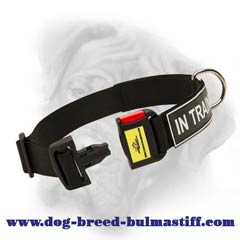 Bullmastiff nylon dog collar for safe walking