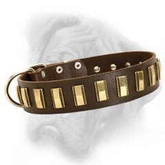 Bullmastiff quality leather dog collar with plates