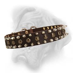 Bullmastiff collar with studs and spikes